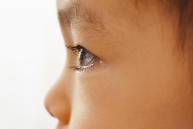 視覚優位タイプとは?特徴に合った勉強法や生活の工夫を専門家が解説